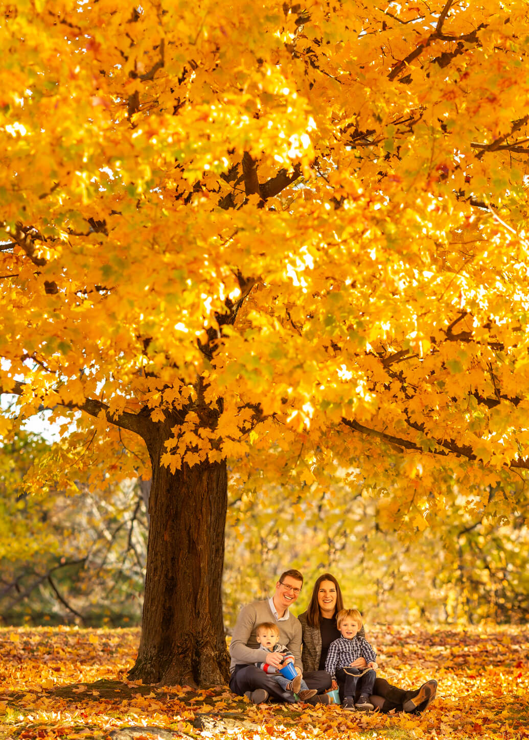 Fall Family Fine Art Portraits, Family Photographer Boston 3