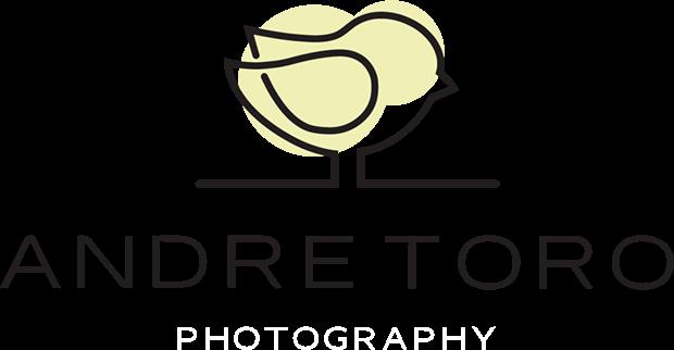 Andre Toro Photography